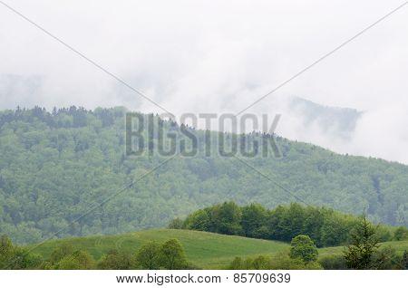 Foggy Mountain Landscape After Rain