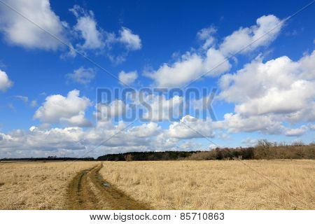 Rut road in steppe under nice clouds in sky