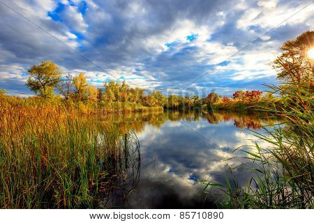 Autumn scene on lake at a nice day