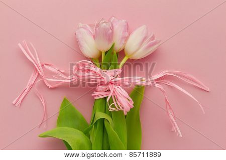 Wallpaper With Tulip