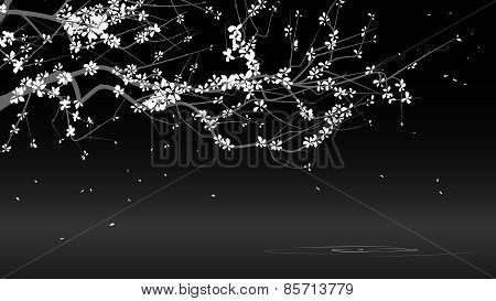 Horizontal Black And White Illustration Drawing Of Blossoming Tree Branch.