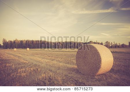 Vintage Landscape Of Straw Bales On Stubble Field