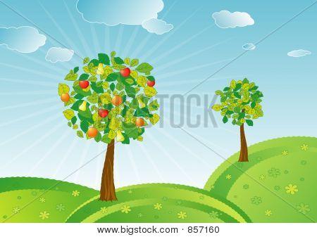Spring fruit trees