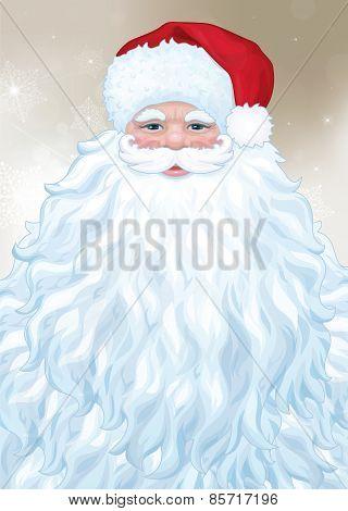 Vector Santa Claus portrait.