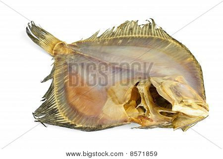 Salted Turbot Flatfish
