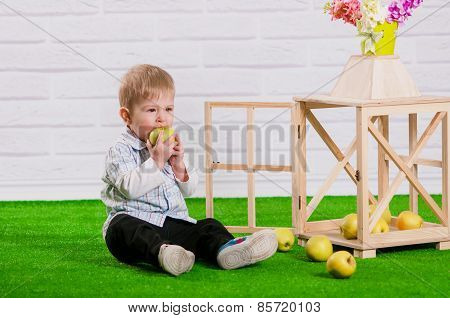 Little boy eating a apple