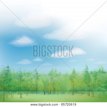Vector nature landscape.