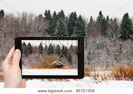 Tourist Photographs Wooden House In Snowed Forest