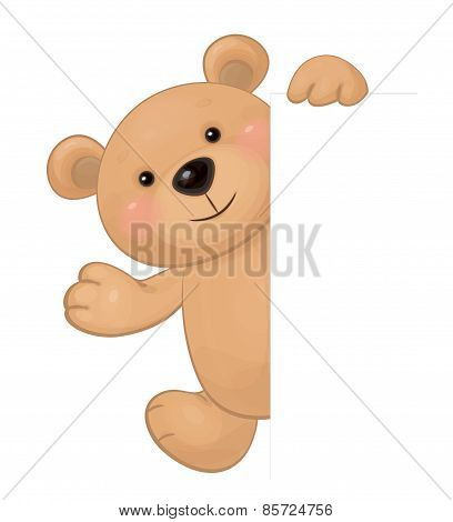 Vector of cute brown bear hiding by blank isolated.