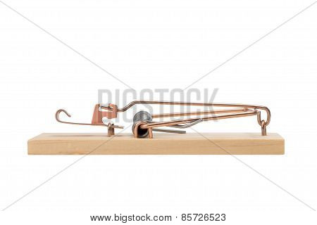 Mousetrap - Studio Macro Isolated On White