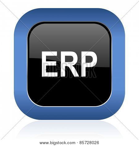 erp square glossy icon