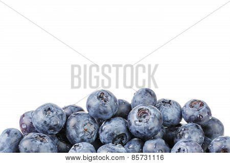 fresh blueberries border over white background