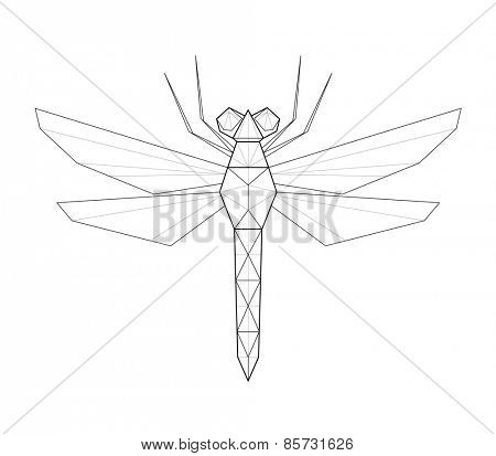 Dragonfly. Low polygon linear vector illustration