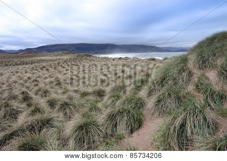 Wild Dunes At The Maharees