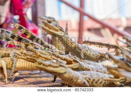 small dead crocodiles in souvenir shop, siem reap cambodia
