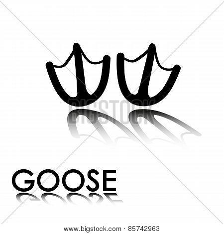 Goose's Paw Prints