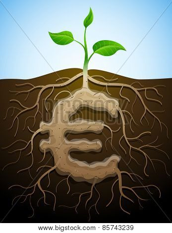 Euro Sign As Root Of Plant