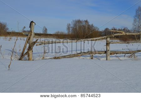 Old rustic fence poles.