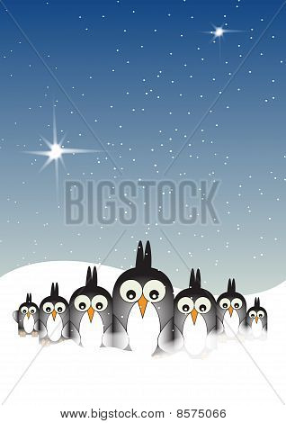 Snowy Penguins