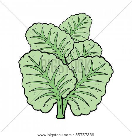 cartoon cabbage leaves