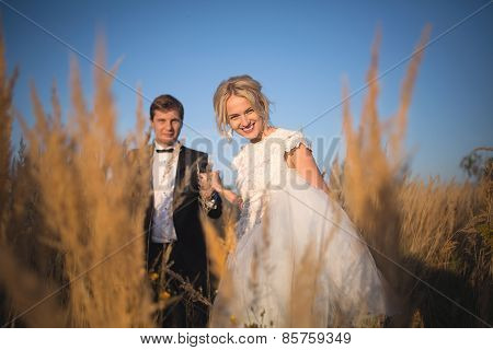 Young wedding smartly dressed couple goes on a field with high e