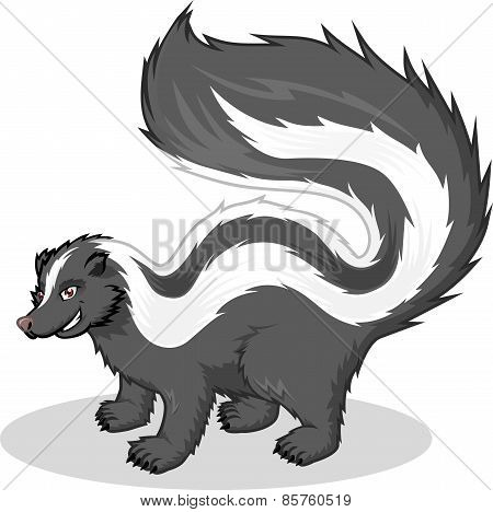 High Quality Skunk Vector Cartoon Illustration