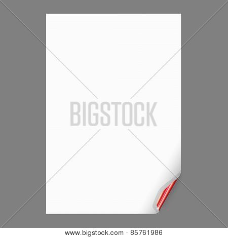 Empty Paper Sheet with Curled Corner. Vector Illustration