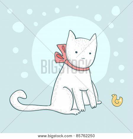 Nice white cat on light blue