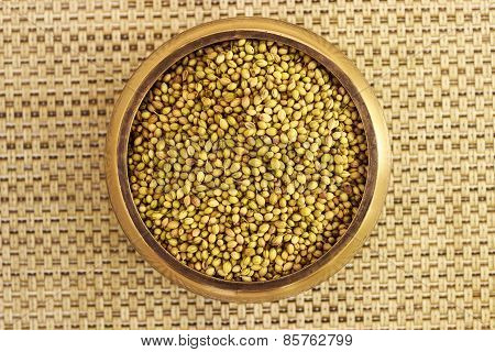 cilantro seeds kept in a bowl on a plain background