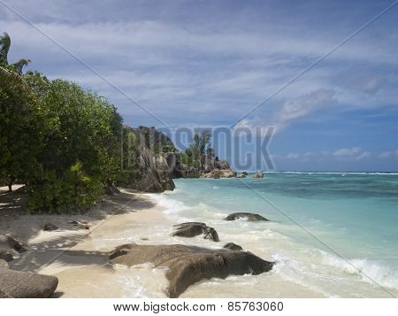 Tropical Island Beach