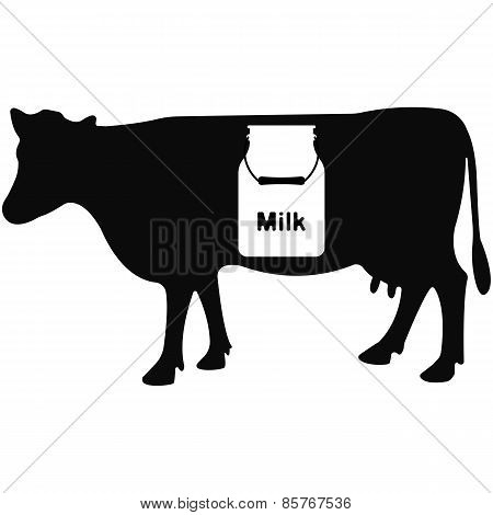 Vector illustration of cow on white background