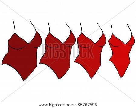 Four Female Swimwear Different Sizes
