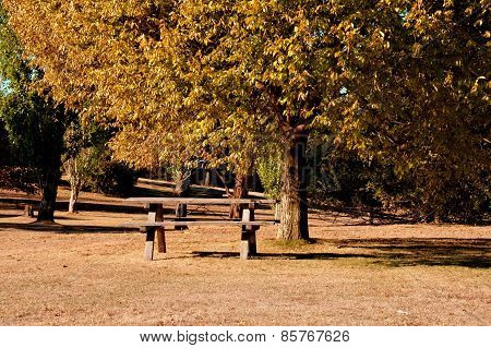 Picnic grounds in Autumn.