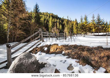 Wooden fence in a snowy field