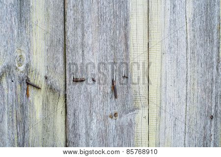 Grey And Green Real Wood Texture Background