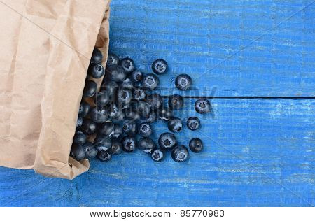 Fresh picked blueberries spilling out of a brown paper bag onto a rustic blue wood table. Horizontal format with copy space shot from a high angle.