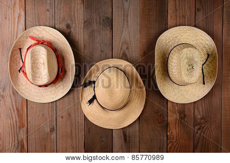 Three straw hats hanging on a rustic wood farmhouse wall. Closeup in horizontal format.