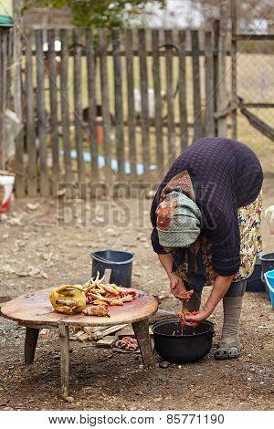 Senior Rural Woman Preparing Chicken Outdoor