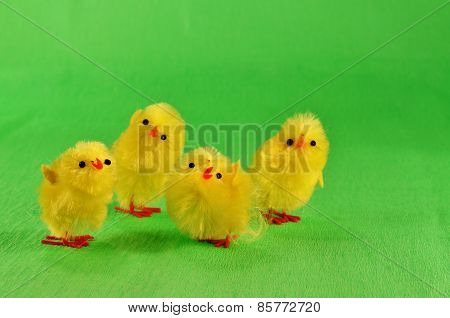 Four Easter chicks