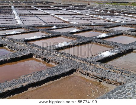 Salina del Carmen salt evaporation ponds