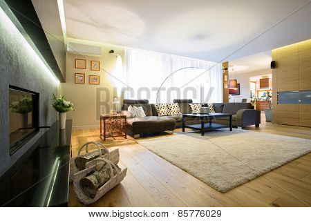 Enormous Lounge With Big Sofa