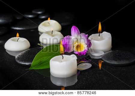Spa Setting Of Purple Orchid Dendrobium, Green Leaf With Dew And Candles On Black Zen Stones In Refl