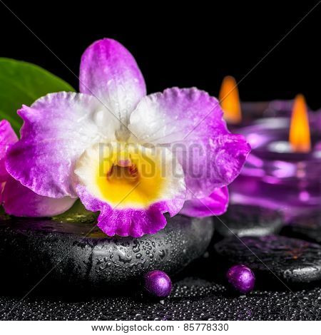 Spa Background Of Purple Orchid Dendrobium, Green Leaf Calla Lily, Purple Candles And Beads On Zen S