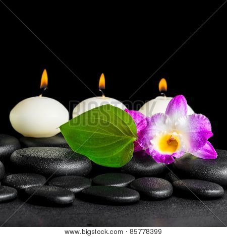 Spa Still Life Of White Candles, Orchid Flower Dendrobium And Green Leaf On Black Zen Stones Backgro