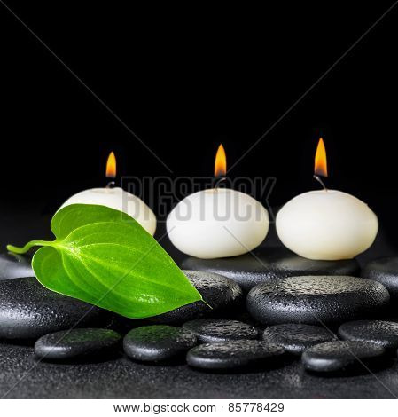 Spa Background Of White Candles And Green Leaf On Black Zen Stones Background With Dew, Closeup