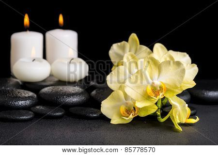 Beautiful Spa Concept Of Yellow Orchid Phalaenopsis And Candles On Black Zen Stones With Drops, Clos