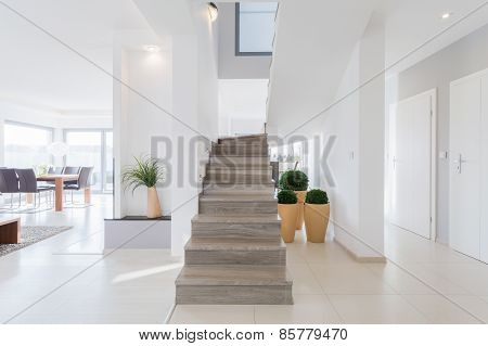 Bright Spacious Detached House