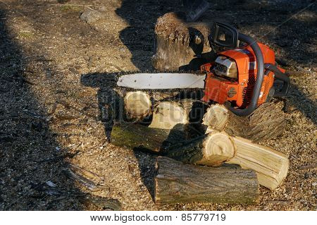 Chainsaw to cut a wooden background trunk and sawdust