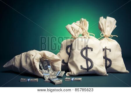 Money bags with dollars