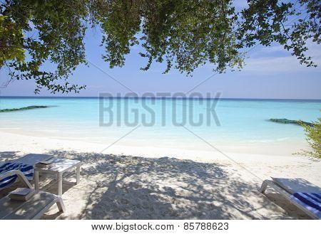 Maldives. A sandy beach and an ocean coast.